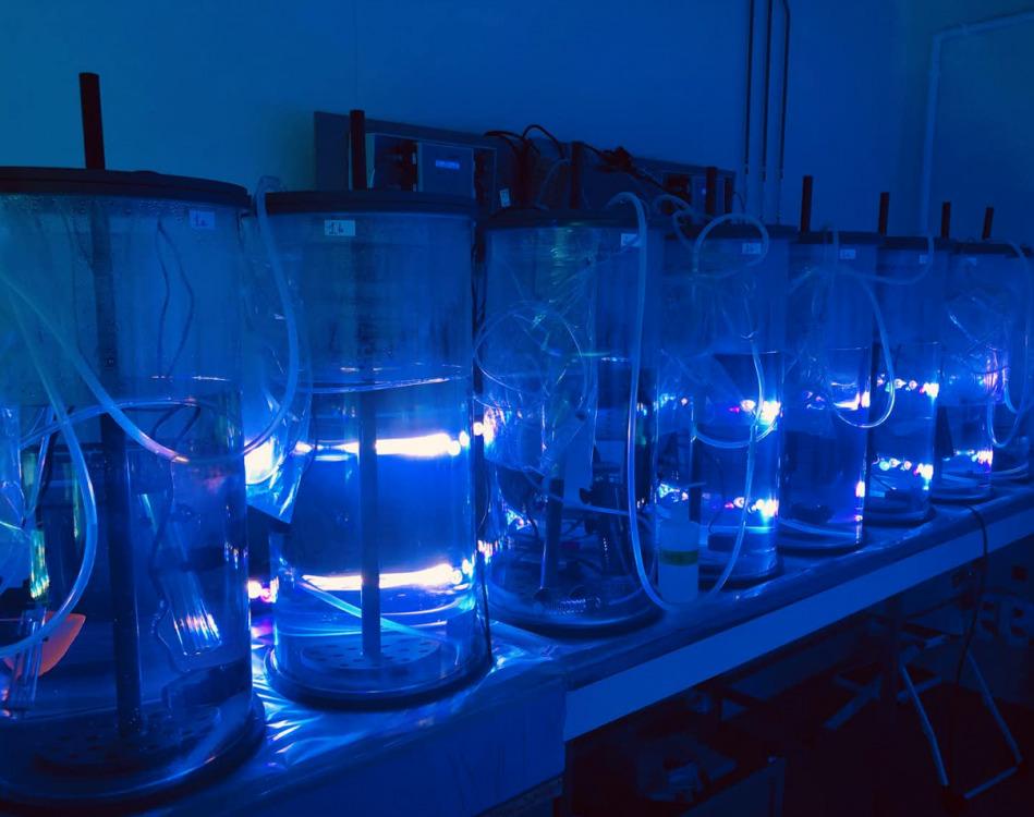 Estos experimentos buscan probar la respuesta de las células diazótrofas frente a diversos escenarios de cambio climático simulados previstos hasta 2100, y son parte del proyecto NOTION.