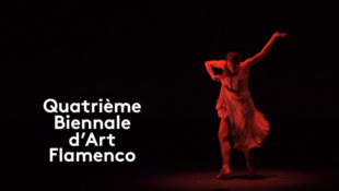 spot_flamenco_mk2