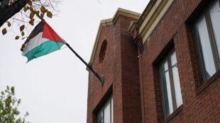 巴勒斯坦旗帜飘扬在巴解组织驻华盛顿办事处办公处   2017年11月