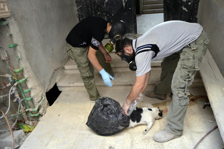 Активисты собирают пробы и погибших животных для анализа на применение химического оружия под Дамаском 22/08/2013
