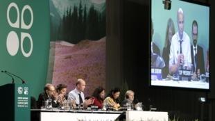 Ông Marcin Korolec (G), Chủ tịch COP19 tóm tắt các quyết định của Hội nghị, Vacxava, ngày 23/11/2013
