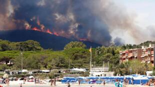 Bormes-les-Mimosas: incêndio florestal numa das regiões mais viistadas da França.