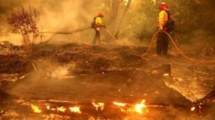 La Californie est en proie à des feux de forêts depuis plusieurs semaines.