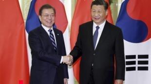 韓國總統文在寅(左)與中國國家主席習近平2019年12月23日北京人大會堂