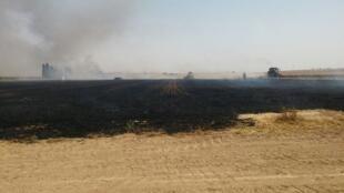 Um incêndio causado por uma pipa incendiária lançada por palestinos de Gaza contra Israel.