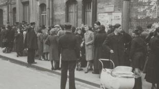 Во время облавы «Зеленый билет» были арестованы 3700 человек.