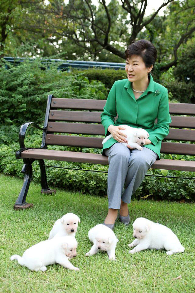 Park Geun-Hye , Presidente  da Coreia do Sul.  Março 2017
