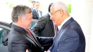 ملک عبدالله، پادشاه اردن، نخستین رهبر یک کشور عربی در ملاقات با عدلی منصور رئیس جمهوری موقت مصر