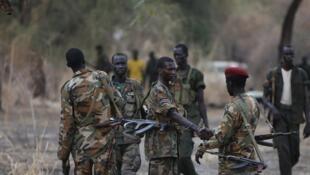 Combattants rebelles sud-soudanais dans l'Etat de Jonglei, le 1er février 2014.