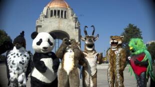 Quỹ Quốc Tế Bảo Vệ Thiên Nhiên (WWF) vận động để bảo vệ những loài bị đe dọa tuyệt chủng. Ảnh chụp tại Mêhicô, nhân cuộc tuần hành ngày 29/11/ 2015, trước Hội nghị Khí hậu Paris.