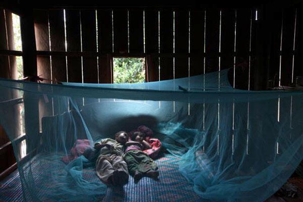 Au Cambodge, le grand succès du contrôle sur le paludisme, où il est en nette régression, est dû en grande partie à la distribution de moustiquaires imprégnés d'insecticide.
