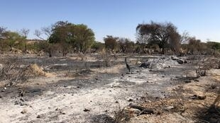 Madagascar - sécheresse -  sur la piste vers Amboasary