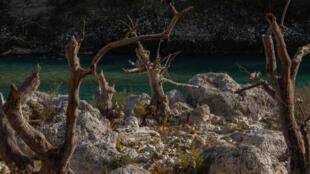 Situé en Albanie, la Vjosa est le dernier fleuve sauvage d'Europe et pourrait être menacé par un grand projet de barrage