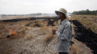 Một nông dân trên cánh đồng khô cạn của