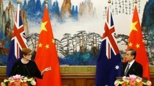 (资料图片)澳大利亚外长佩恩与中国外长王毅
