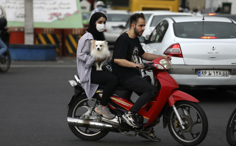 Habitants de Téhéran, Iran, avec leur chien sur un scooter