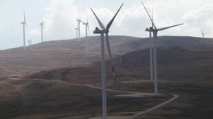 Ferme éolienne de Tafileh au sud de la Jordanie, gérée par la Jordan Wind Project Company.