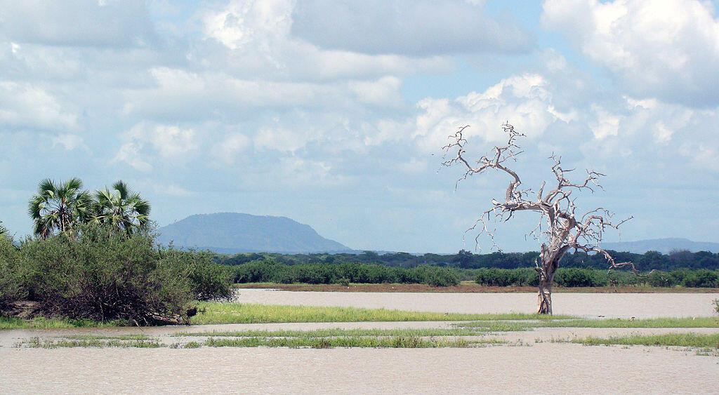 Moja la eneo la Tanzania. Eneo la Rufiji.