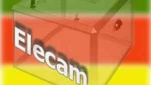 Le logo de Elections Cameroun, l'instance en charge de l'organisation des élections au Cameroun.