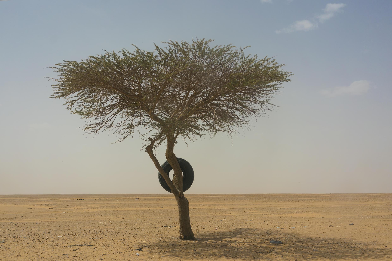 En plein coeur du Sahara au Nord du Niger