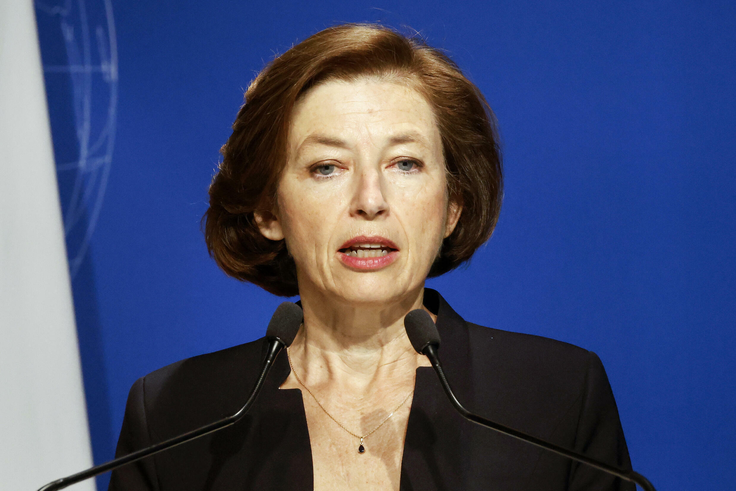 Defence Minister Florence Parly says Paris will not be able to 'cohabit' with 'mercenaries'