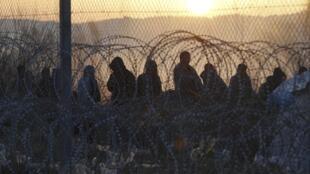 Мигранты на границе Греции и Македонии, 23 февраля 2016 г.