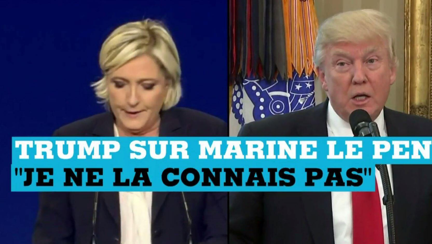 Nhiều người so sánh lãnh đạo Mặt Trận Quốc Gia Pháp Le Pen với tổng thống Mỹ Donald Trump.