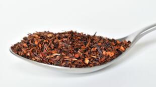 Une cuillère de rooibos, ou thé rouge.