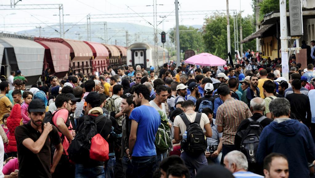 Người tỵ nạn, phần đông từ Syria, tìm cách băng qua biên giới Macedonia - REUTERS /Ognen Teofilovski