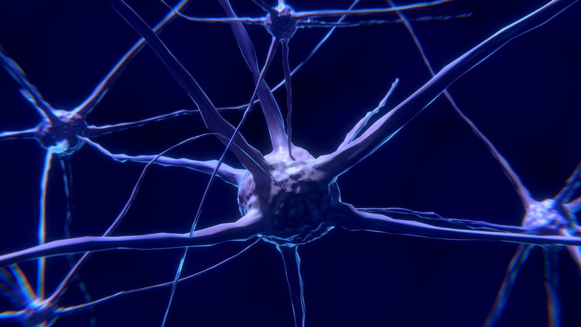 Des scientifiques ont reproduit artificiellement le fonctionnement des cellules nerveuses.