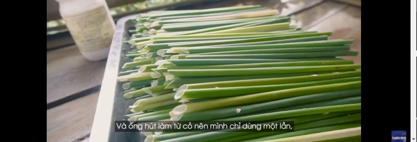 Ống hút cỏ bàng