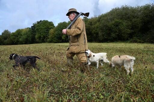 A França conta mais de um milhão de caçadores legalizados