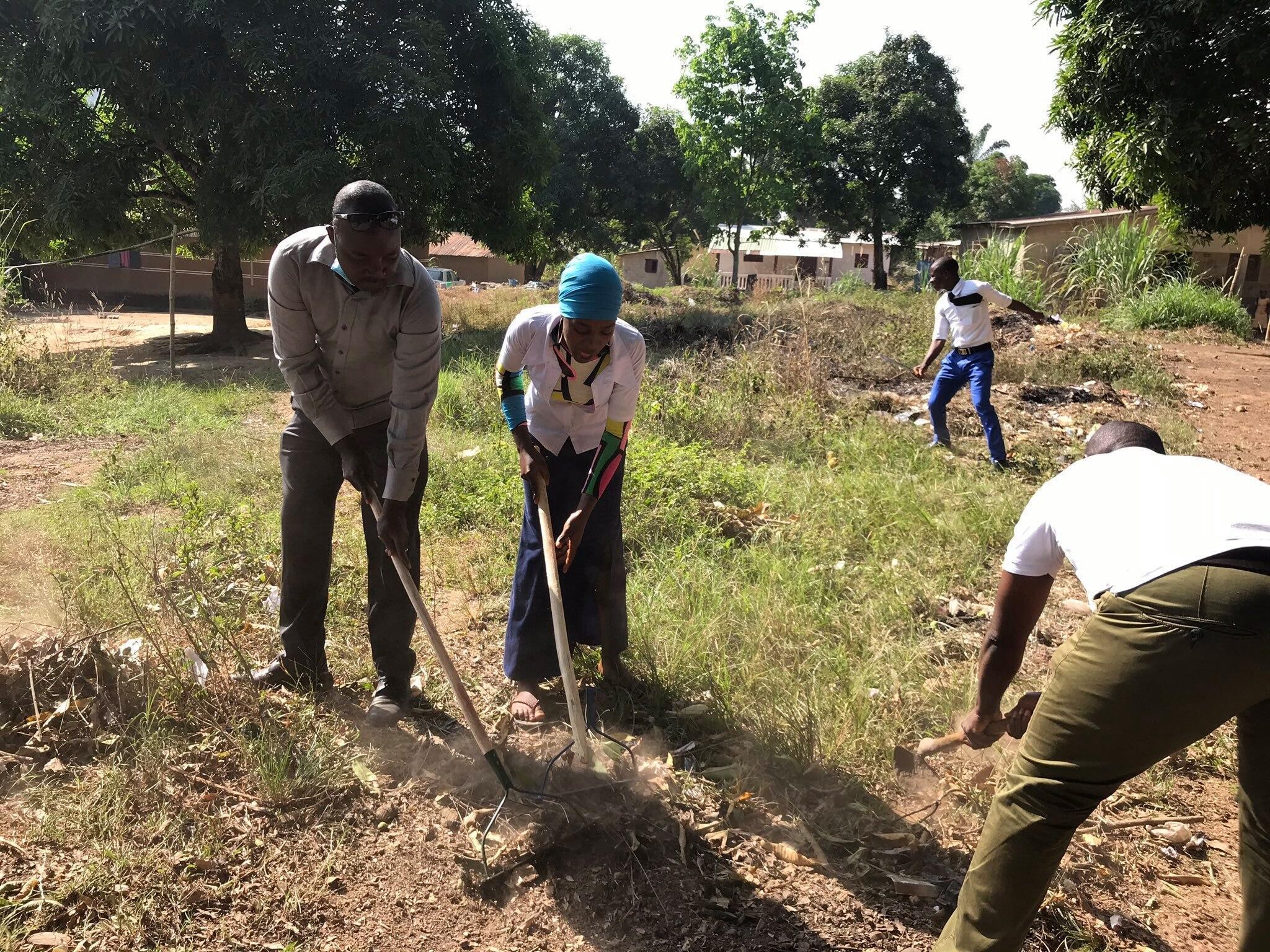 Guinée - Agro-écologie - Festisol