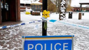Цветы напротив скамейки в парке Солсбери, на которой были обнаружены Сергей Скрипаль и его дочь без сознания 4 марта 2018.