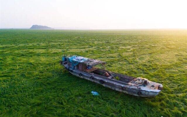 中國網絡盛傳的鄱陽湖乾枯的圖片,2018年4月.