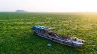 中国网络盛传的鄱阳湖干枯的图片,2018年4月.