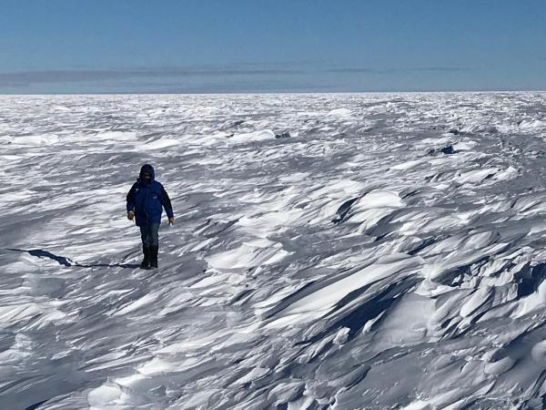 A member of the EAIIST expedition gathers snow samples in a field of sastrugi, shapes sculpted by the wind that can exceed one metre in height.