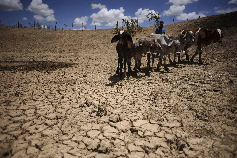 Secas serão uma das consequências das mudanças climáticas.