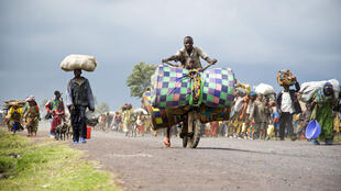 Des milliers de personnes fuyant les camps pour personnes déplacées et leurs environs, à Kibati, dans le Nord-Kivu, le 7 novembre 2008.