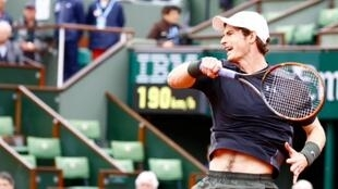 Andy Murray at Roland Garros 2016