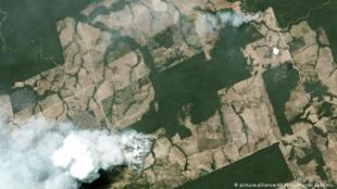 Imagens de satélite dos incêndios na Amazónia