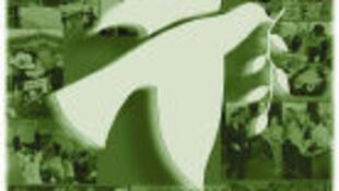 绿色和平组织
