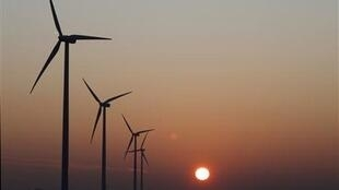 Le plus grand parc d'éoliennes en Provence a été installé à Port-Saint-Louis, avec 24 mâts érigés.