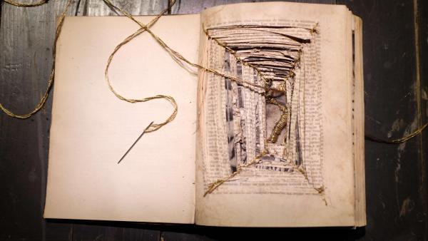 Résilience, œuvre de l'artiste colombienne Camila Rodriguez Triana, présentée au « Panorama 21 » du Fresnoy.