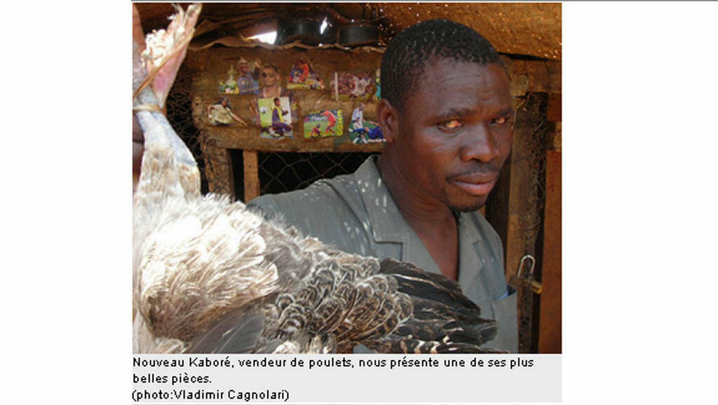 Nouveau Kaboré, vendeur de poulets nous présente une de ses plus belles pièces.
