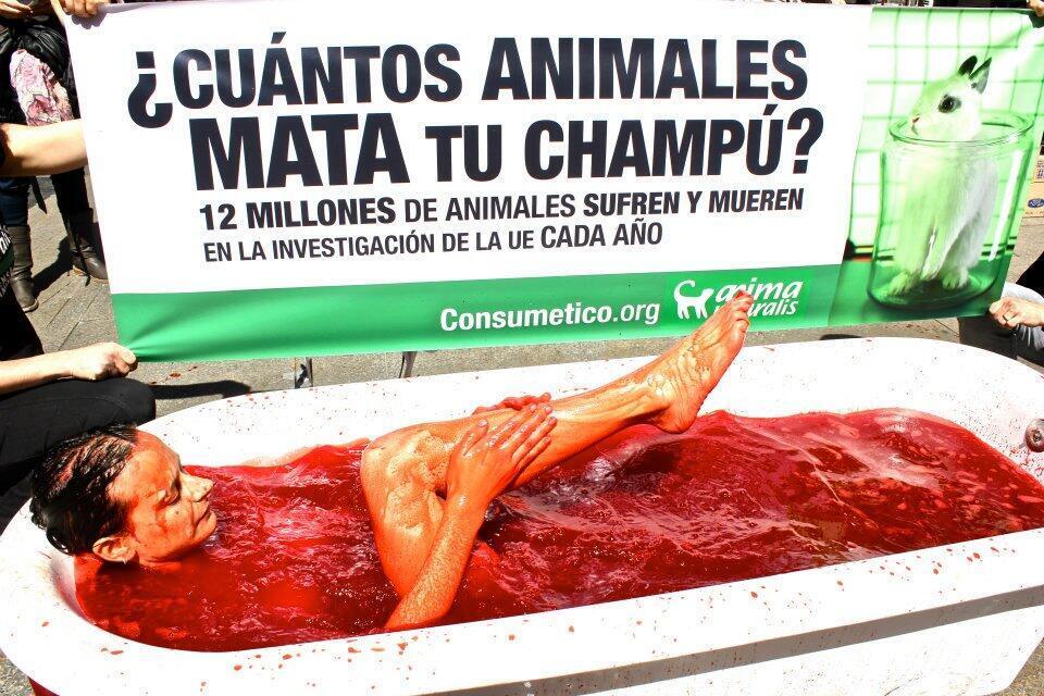 """""""Quantos animais mata seu xampu?"""", diz cartaz de campanha de propaganda contra testes com animais em Barcelona."""