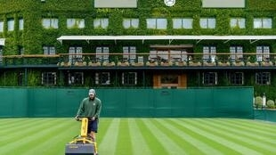 Wimbledon staff tend to the grass courts at the All England Club