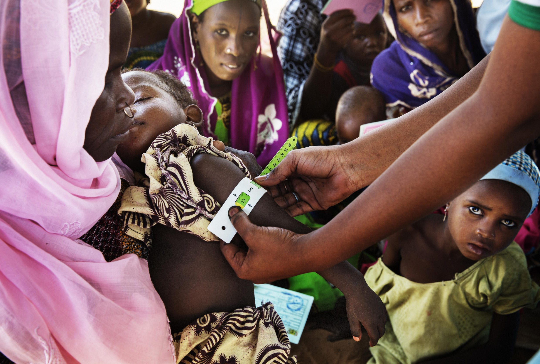 Au Niger, jusqu'à 2 700 000 personnes ont besoin d'une assistance pendant cette période de soudure.