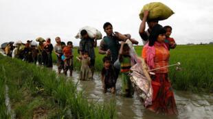 Daruruwan musulmai 'yan kabilar Rohingya ne a kowacce rana ke ci gaba da ficewa daga Myanmar zuwa makwabtaka don tsira da rayukansu bayan kisan kiyashin da ake ci gaba da yi musu a yankin Rakhine.