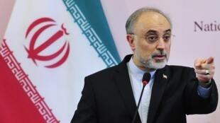 Le ministre iranien des Affaires étrangères Ali Akbar Salehi en novembre 2011.